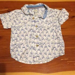 Boys 12 Month Button Down Shirt